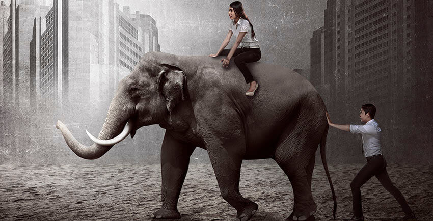 The End Of Procrastination Using Willpower - elephant rider